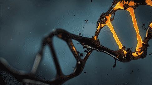 Analyse ADN : quelles sont les différentes perspectives à votre portée?